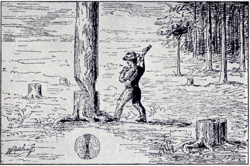 Drawing of a man chopping down a tree