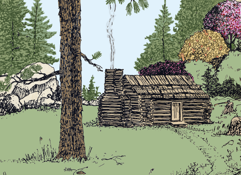 drawing of cabin and forest