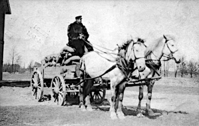 Black and white photo of a man sitting on a wooden wagon that is filled with fertilizer. Pulling the wagon are two large white horses.